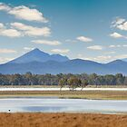 Grampians Wetlands by Victor Pugatschew