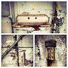 Alcatraz Sink by Barbara Wyeth