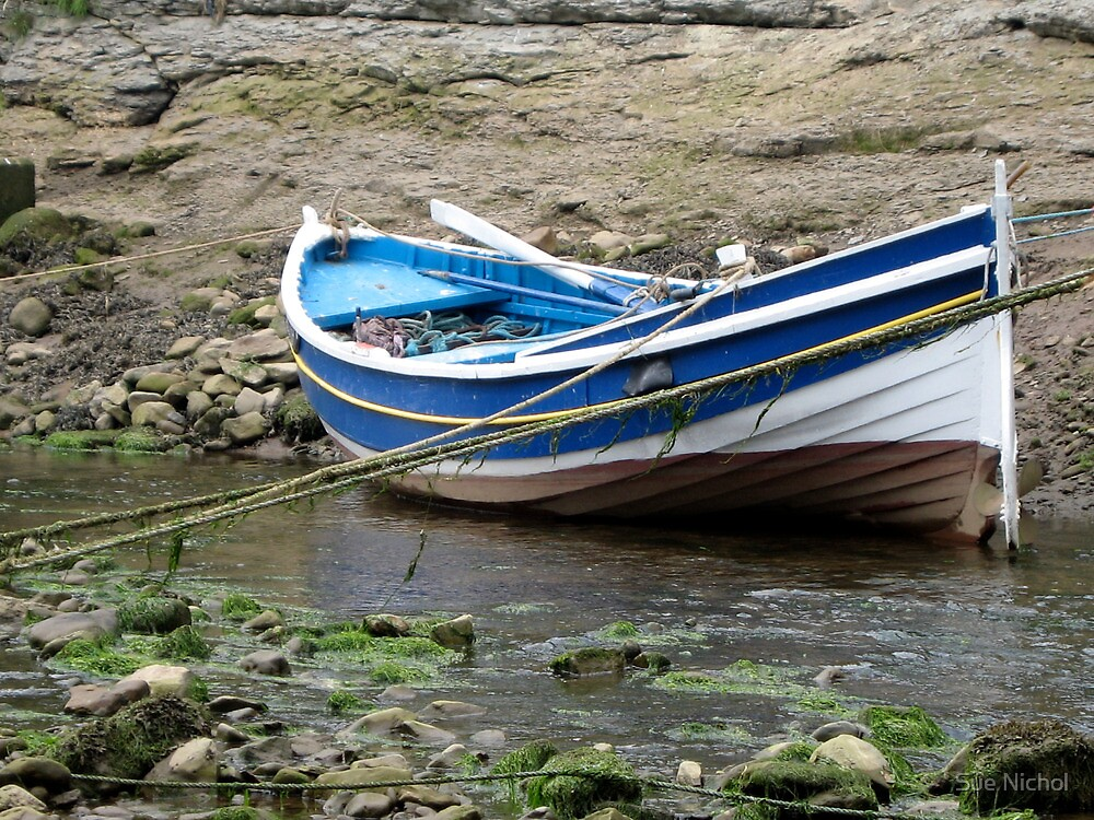 Double Ender Fishing Boat , Staithes by Sue Nichol