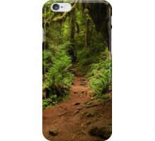 A Trail in the Woods iPhone Case/Skin