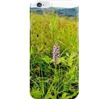 Lesser Purple Fringed Orchid II iPhone Case/Skin