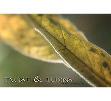 TWISTS & TURNS © Photographic Print