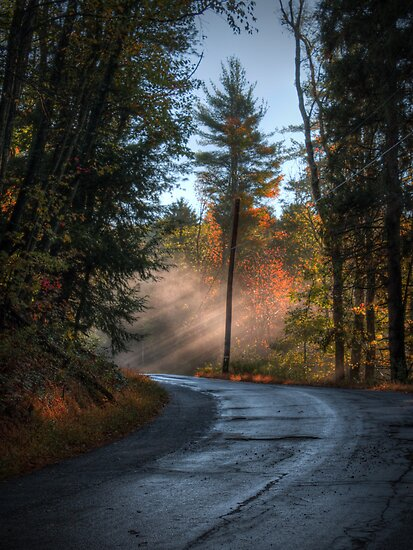 Light Rays on Jackson Rd by Aaron Campbell
