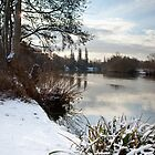 Winter on the Thames, Desborough Island by Rachael Talibart