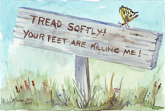 Tread Softly! by Maree  Clarkson