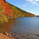 &#x27;Fall Color at Jordan Pond&#x27; by Scott Bricker
