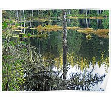 Reflections: Texas Pond  Poster