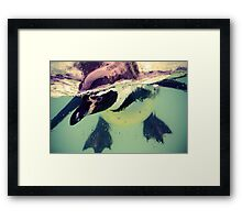 Make a splash Framed Print