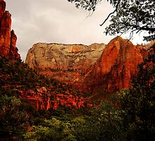 Zion National Park by Wayne Cook