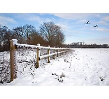 Winter on Desborough Island Photographic Print