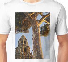 Balboa Park Textures Unisex T-Shirt