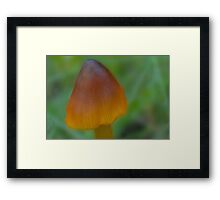 The Witch's Hat Framed Print