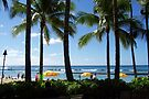 Tropical Vacation! by John Carpenter