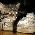 If the shoe fits.... by Heather King