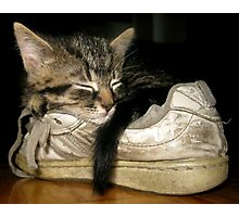 If the shoe fits.... Photographic Print