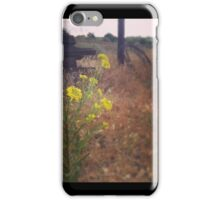 Close up of Yellow Wildflowers  iPhone Case/Skin