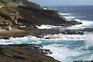 Rugged Weathered Shoreline by John Carpenter