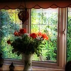 My Room-My View by naturelover