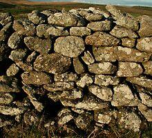 ancient rock wall dartmoor by badger692