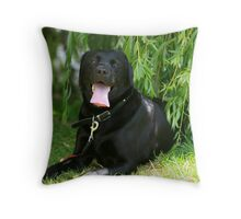 casper in the shade Throw Pillow