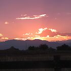 My Pink Sky Colorado! by autumngirl