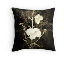 Waterside Wonders Throw Pillow