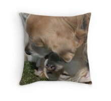 Doggie Love! Throw Pillow