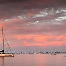 Twilight Glow- Airlie Beach by Tim Wootton