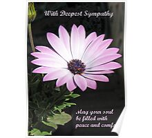 Bereavement Card featuring Cape Daisy Poster