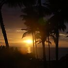 Dark Sunset through Palm Trees by markrt