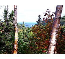 Cape Breton Autumn Photographic Print
