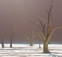 Mysterious Deadvlei by Marylou Badeaux