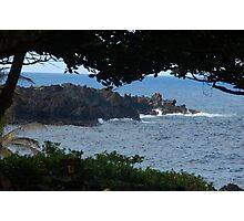 Ocean view through trees Photographic Print