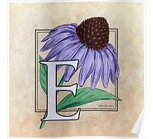 E is for Echinacea Poster