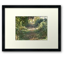 The Lonely Road Framed Print