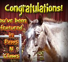 paws and claws banner challenge by vigor