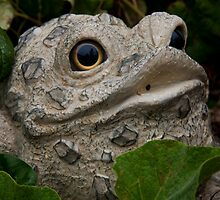 Ribbit by phil decocco