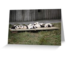 A Platter Of Pandas Greeting Card