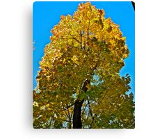 Autumn - great color palette. by Brown Sugar . Views ( 97 ) Thanks ! :-)) Canvas Print