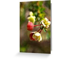 Serpentine Forest Plants Series - Unknown Tiny Greeting Card