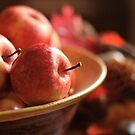 Apple Bowl by Roxanne Persson