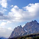Alpine Spectacle by Harry Oldmeadow