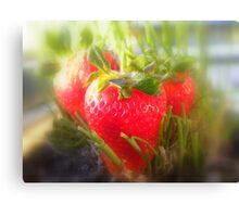 Strawberry Summer Canvas Print