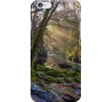 Autumn Fairy Glen iPhone Case/Skin