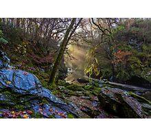 Autumn Fairy Glen Photographic Print
