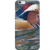 Nature's Palette iPhone Case/Skin