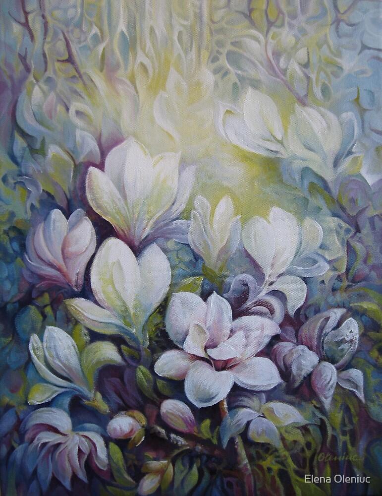 Magnolias by Elena Oleniuc