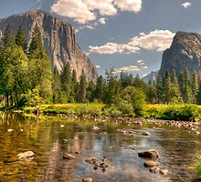 Yosemite National Park by Cathy Grieve