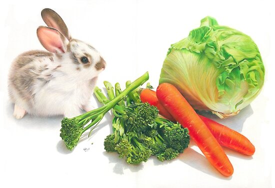 Bunny Banquet by Karen  Hull