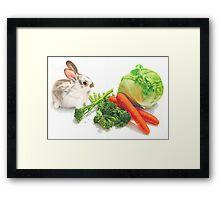 Bunny Banquet Framed Print